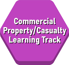 commercial-propertycasualty-learning-track